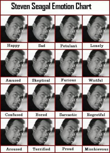 f-Steven-Seagal-Emotion-Chart-4083.jpg (300 KB)