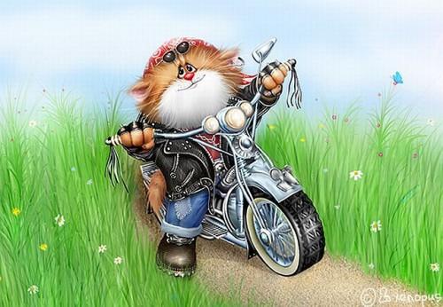 funnycats_00.jpg (85 KB)
