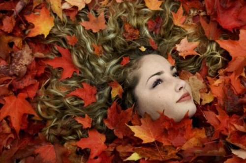 autumn_05.jpg (54 KB)