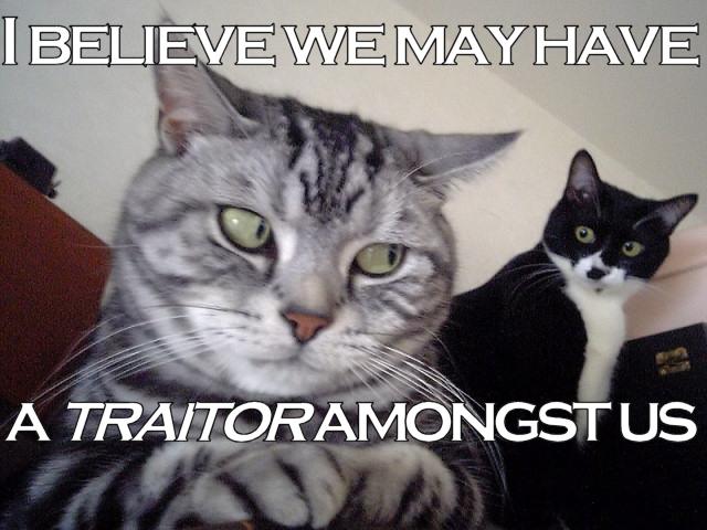 traitor.jpg