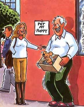 pet-my-puppy.jpg
