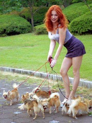 professional dog walker  myconfinedspace