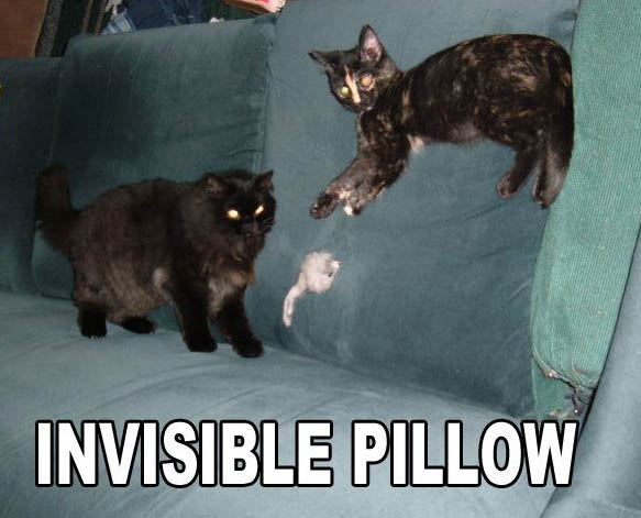 invisible-pillow.jpg
