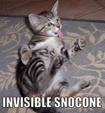 invisible-snocone.png