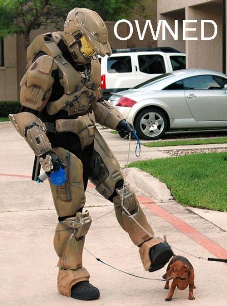 halo-walking-dog.jpg