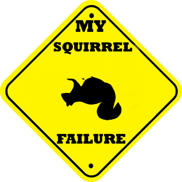 my squirrel failure.thumbnail My Squirrel Failure Humor Computers