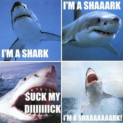 Singing Shark - Live Action