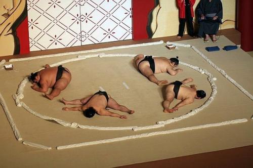 sumo-split.jpg
