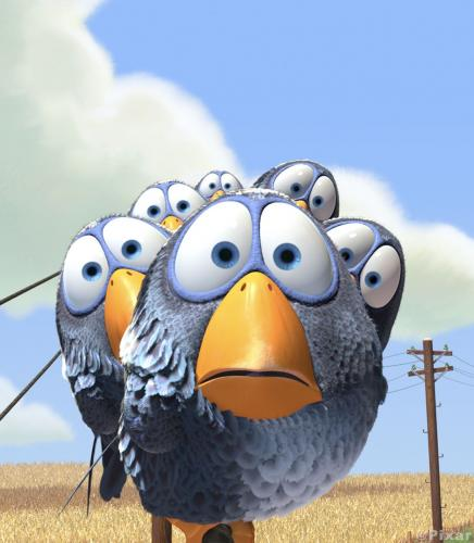 birds.thumbnail Pixar Birds Movies Humor
