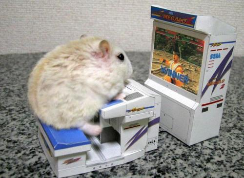 gaming-rodent