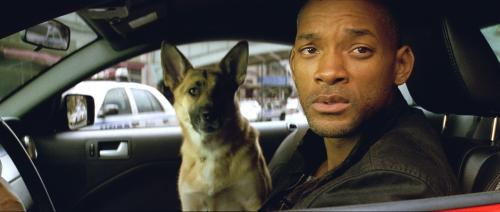 34895 i am legend stills 03.thumbnail I am Legend Movie Stills Movies Fantasy   Science Fiction