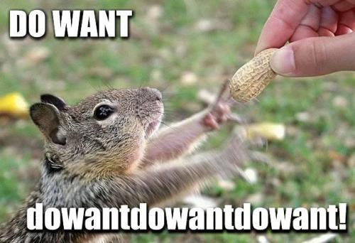 do-want-dowant-dowant-dowant