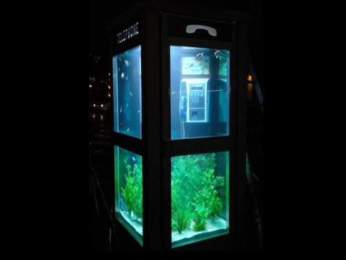 telephone-fish-tank.jpg