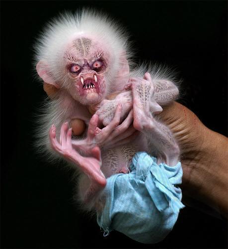 demon-monkey.jpg