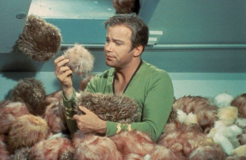 trouble with tribbles 500x325 Trouble With Tribbles Television star trek