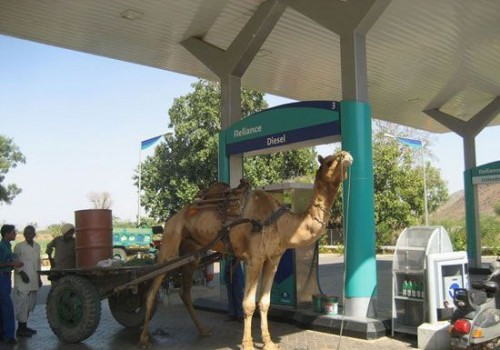 Camel Fuel Up