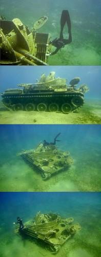 Sea Tank
