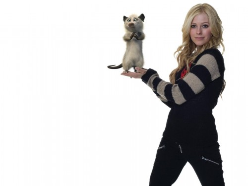 Avril Lavigne And her Pet racoon