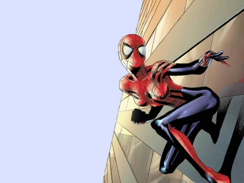 Amazing Spider-Girl On A Wall