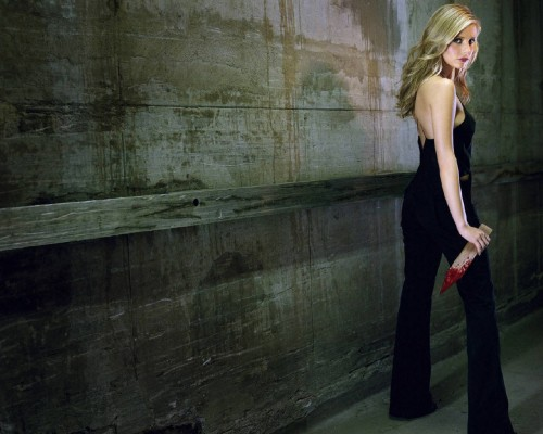 buffy with a bloody stake 500x400 Buffy with a bloody stake Television Sexy Fantasy   Science Fiction
