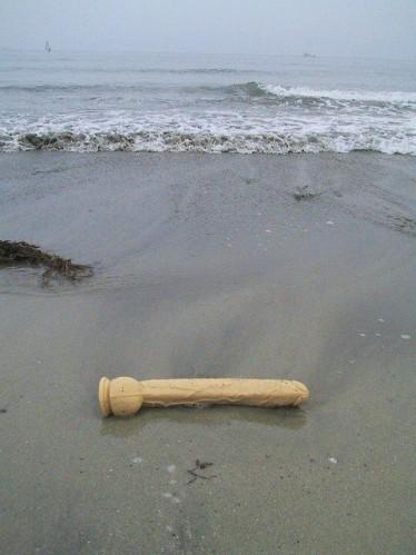 beached dildo