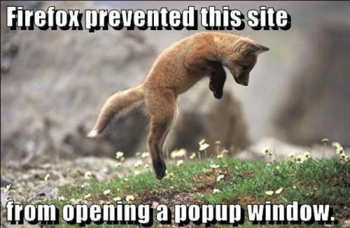 firfox presented this site from opening a popup window