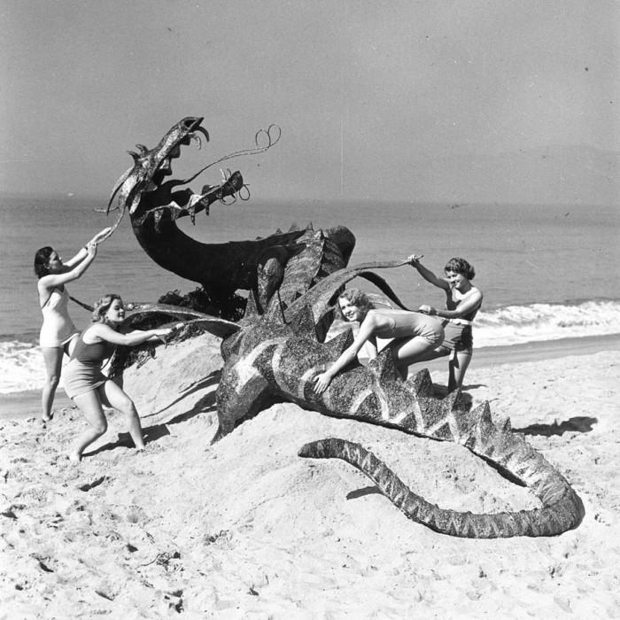 beach dragon slayers