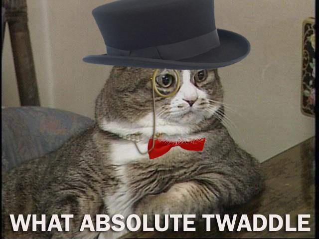 what absolute twaddle what absolute twaddle lolcats Humor forum fodder
