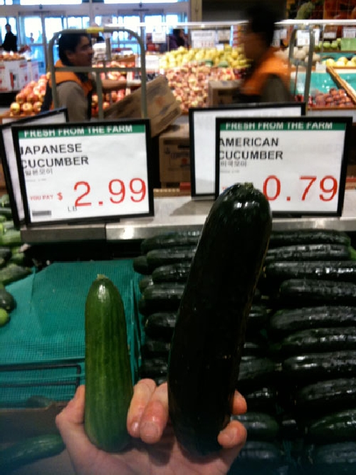 japanese vs american cucumber japanese vs american cucumber