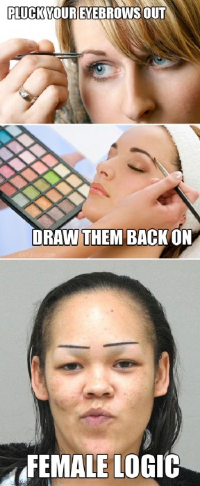female eyebrow logic 288x700 female eyebrow logic