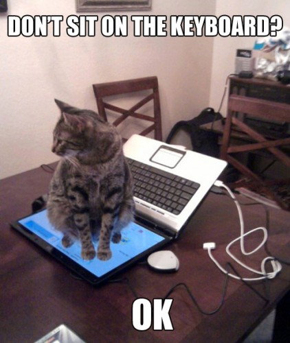 do not sit on the keyboard ok