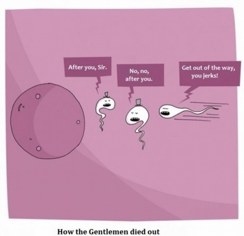 how the gentleman died out
