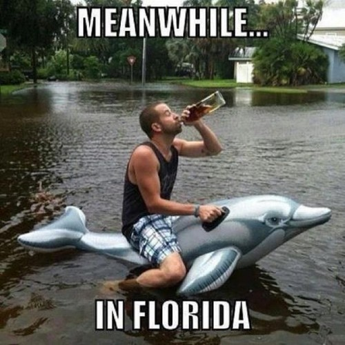 meanwhile, in florida