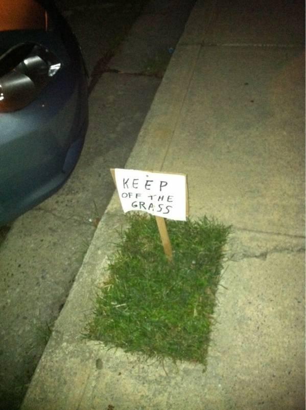 keep off the grass.jpg