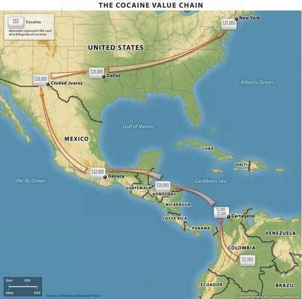 the cocaine value chain.jpg