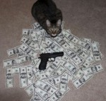 money cat 10 150x143 money cats lolcats Humor