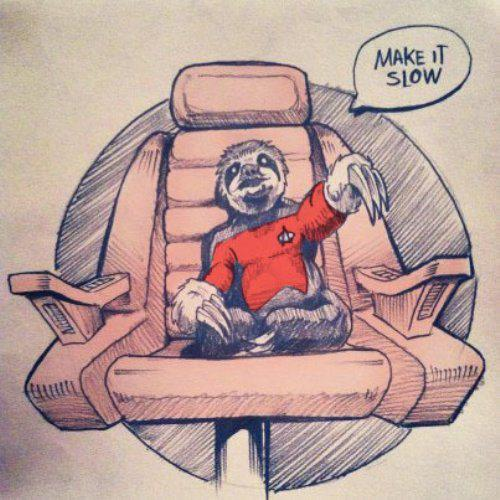 star trek sloth make it slow star trek sloth   make it slow star trek sloths Humor Cute As Hell Animals