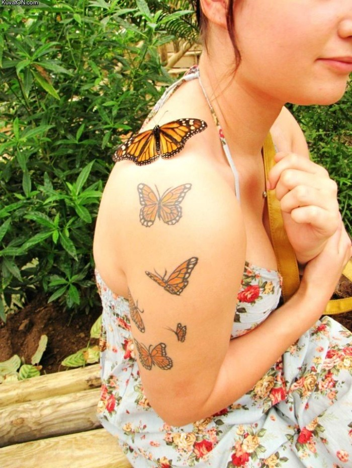 butterfly and butterfly tattoos 700x930 butterfly and butterfly tattoos Visual Tricks Tattoos Sexy not exactly safe for work