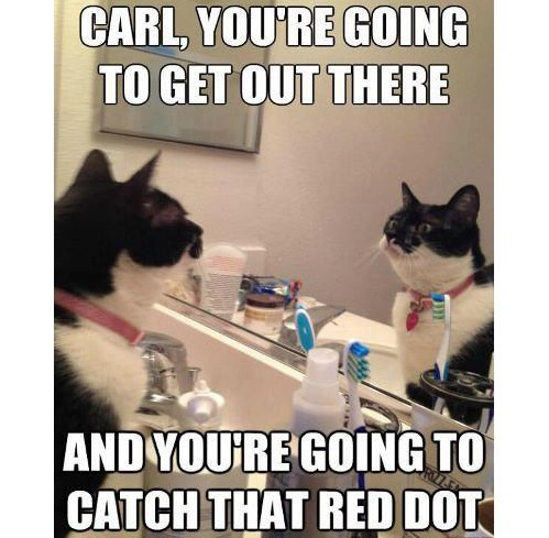 carl you are going to get out there carl, you are going to get out there lolcats Humor