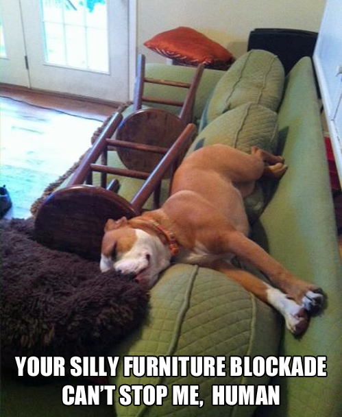 silly furniture blockade silly furniture blockade