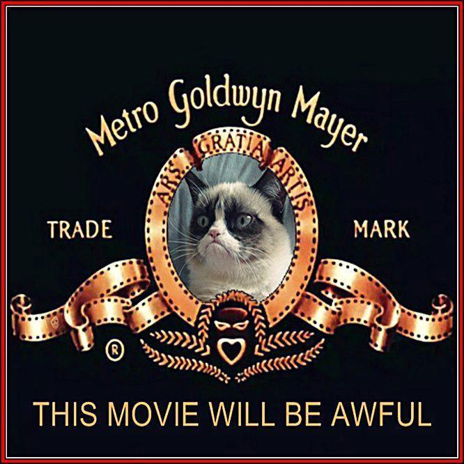 Grumpy Cat Movie.jpg