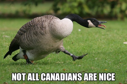 Not All Canadians are nice.jpg