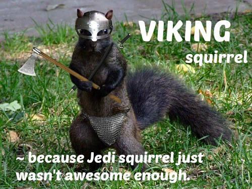 vikign squirrel.jpg