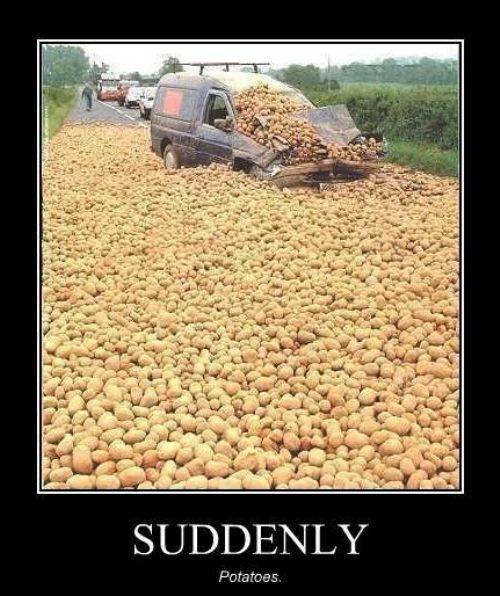 Suddenly - Potatoes.jpg