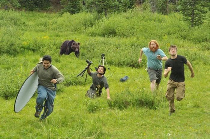 bear runner.jpg