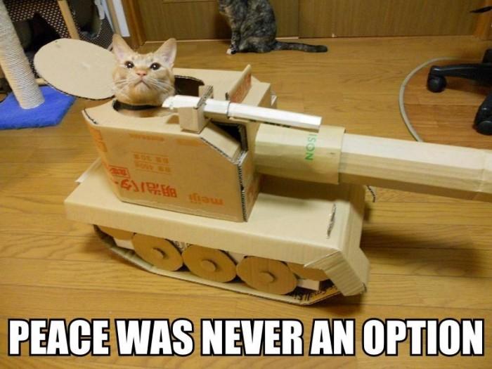 peace was never an option.jpg