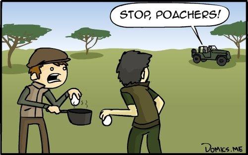 stop, poachers.jpg