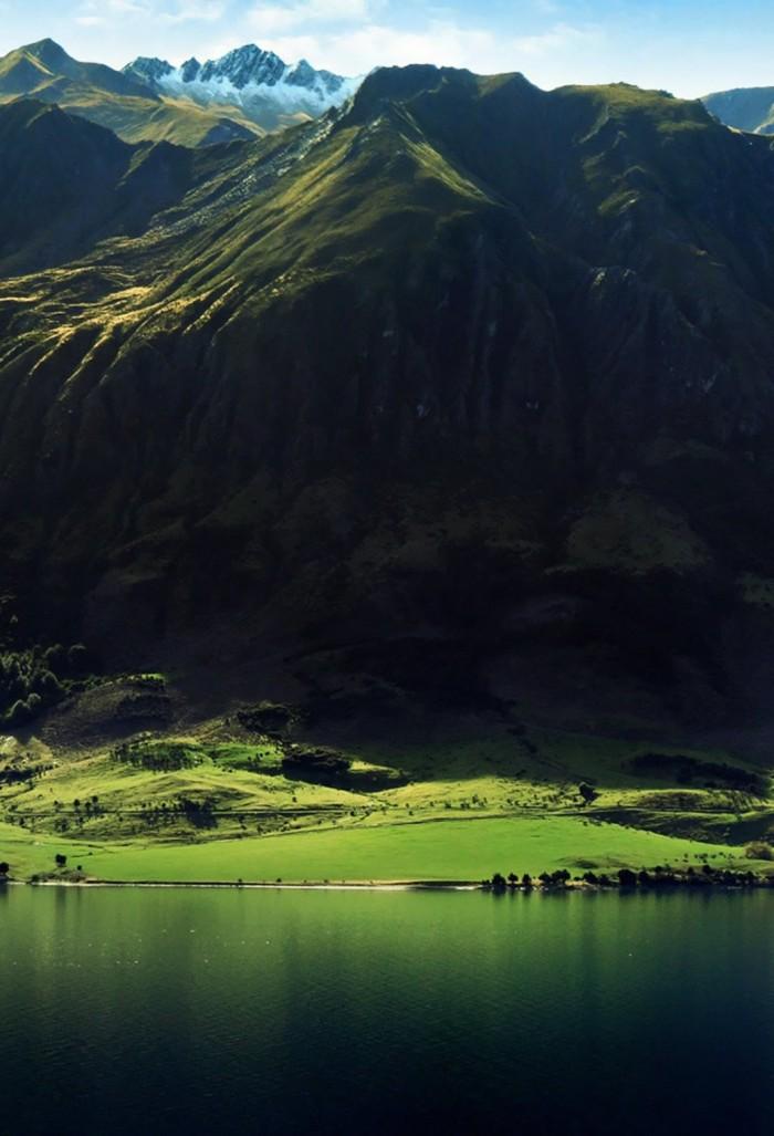 Vertical Green.jpg