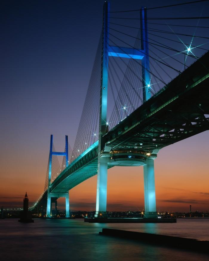 awesome suspension bridge.jpg