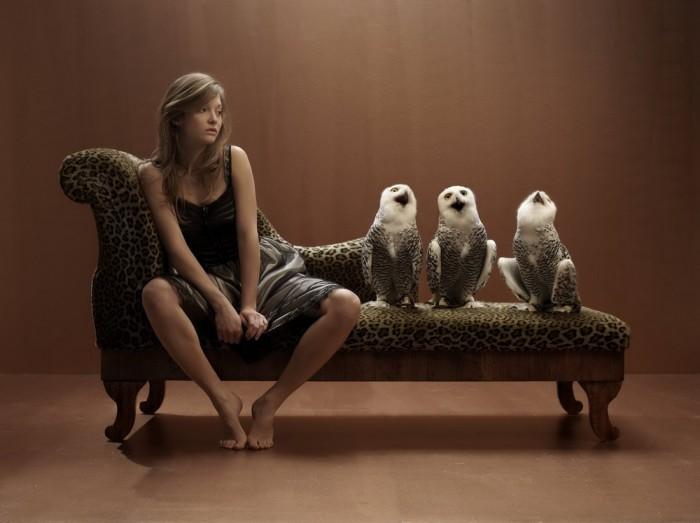 owl couch.jpg